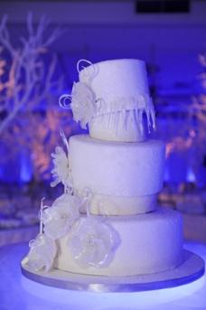 bat-mitzvah-cake