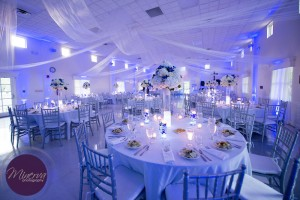 Wedding Reception, Uplighting, Blue Uplighting
