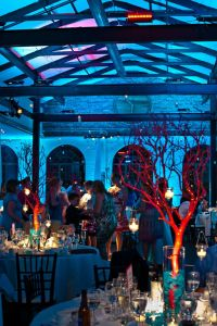 wedding, diy, formal, event, dance, blue uplighting, uplights, red coral, coral centerpieces, under the sea, theme