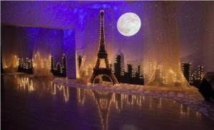 Paris theme, Paris, diy, starry night, blisslight, starry night sky, event, wedding