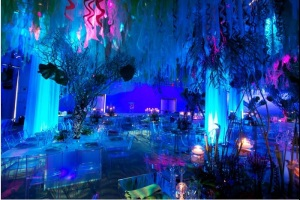 diy, under the sea, theme, formal, dance, ocean theme, under the sea theme, uplighting, blue uplighting, seaweed