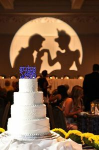 Cinderella, Cinderella theme gobo, wedding gobo, monogram lighting, Disney monogram, diy