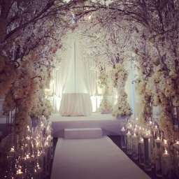 Enchanted Forest Themed Party!