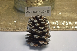 Pinecone Place Cards